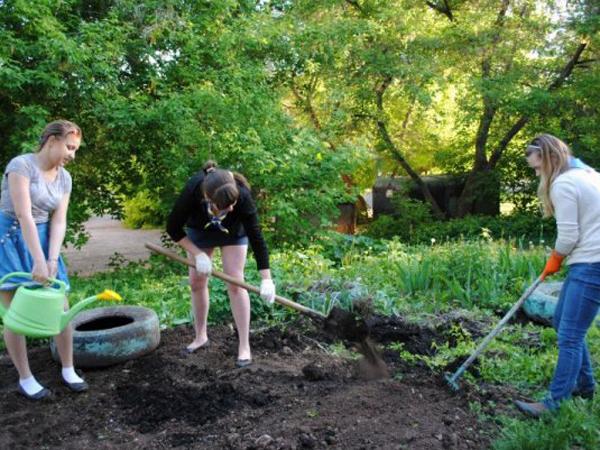 Что сажают в мае в огороде 76